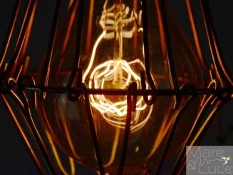 Mare Luce - ampoules 4