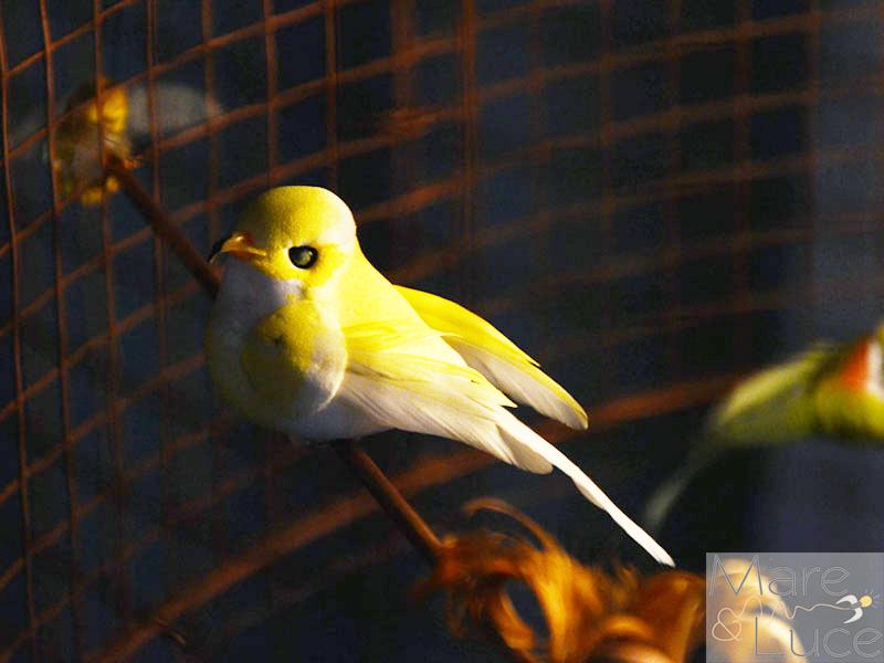 Mare Luce - bird xxl 1